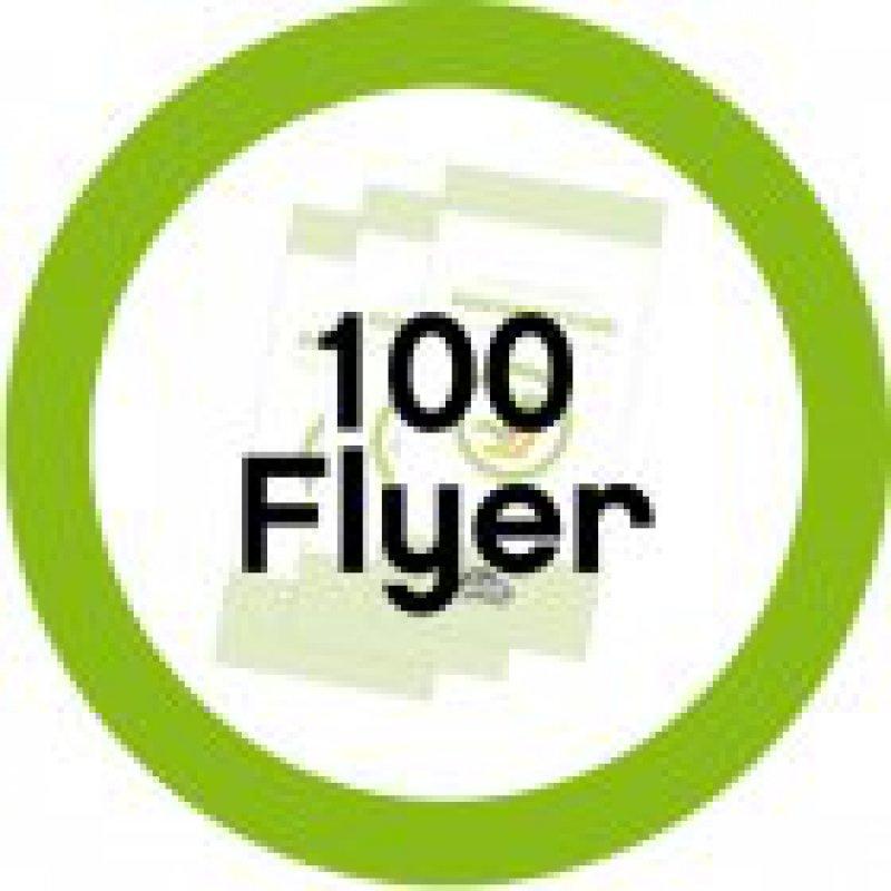 100 Informationsflyer Reboard-Kindersitze