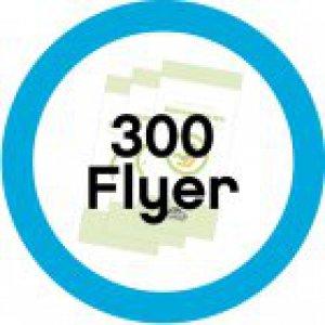 300 Informationsflyer Reboard-Kindersitze